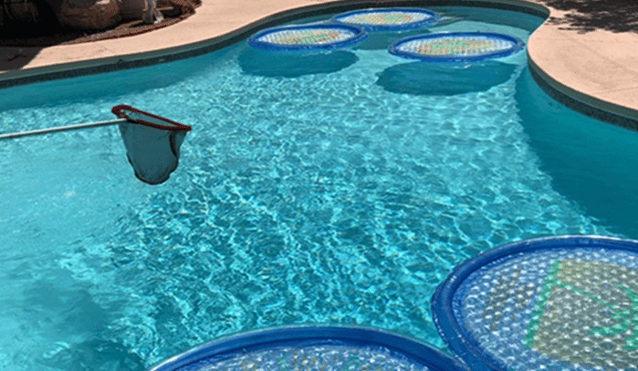 Having green algae in your pool isn't as surprising as you think